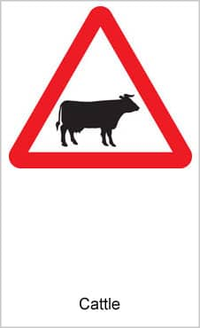 UK Road Signs Cattle